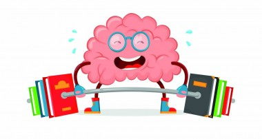 Un gimnasio para entrenar el cerebro