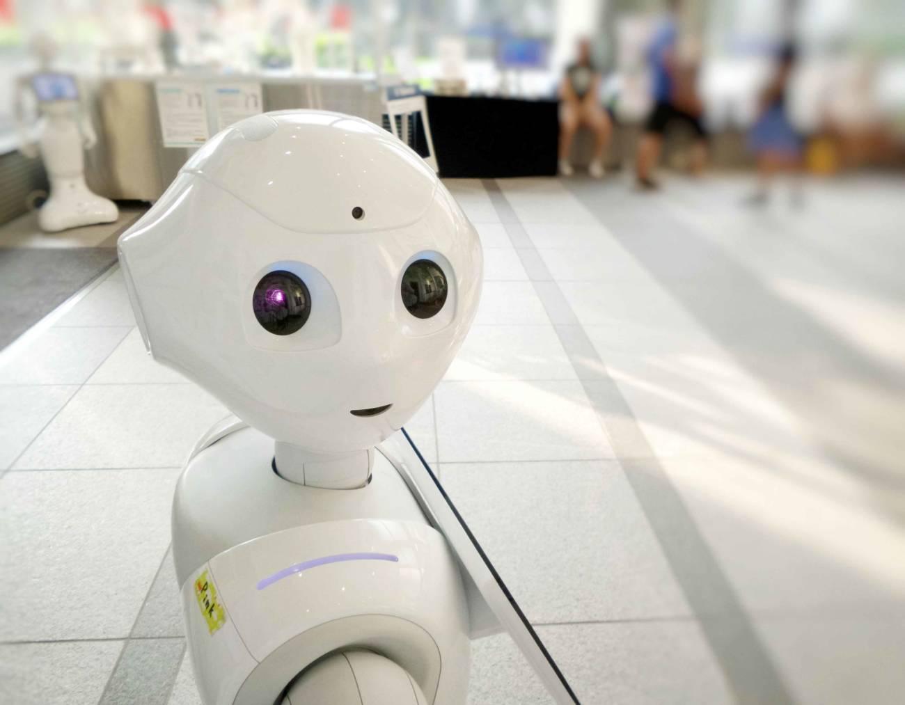 robot, robótica, investigación, innovación, futuro